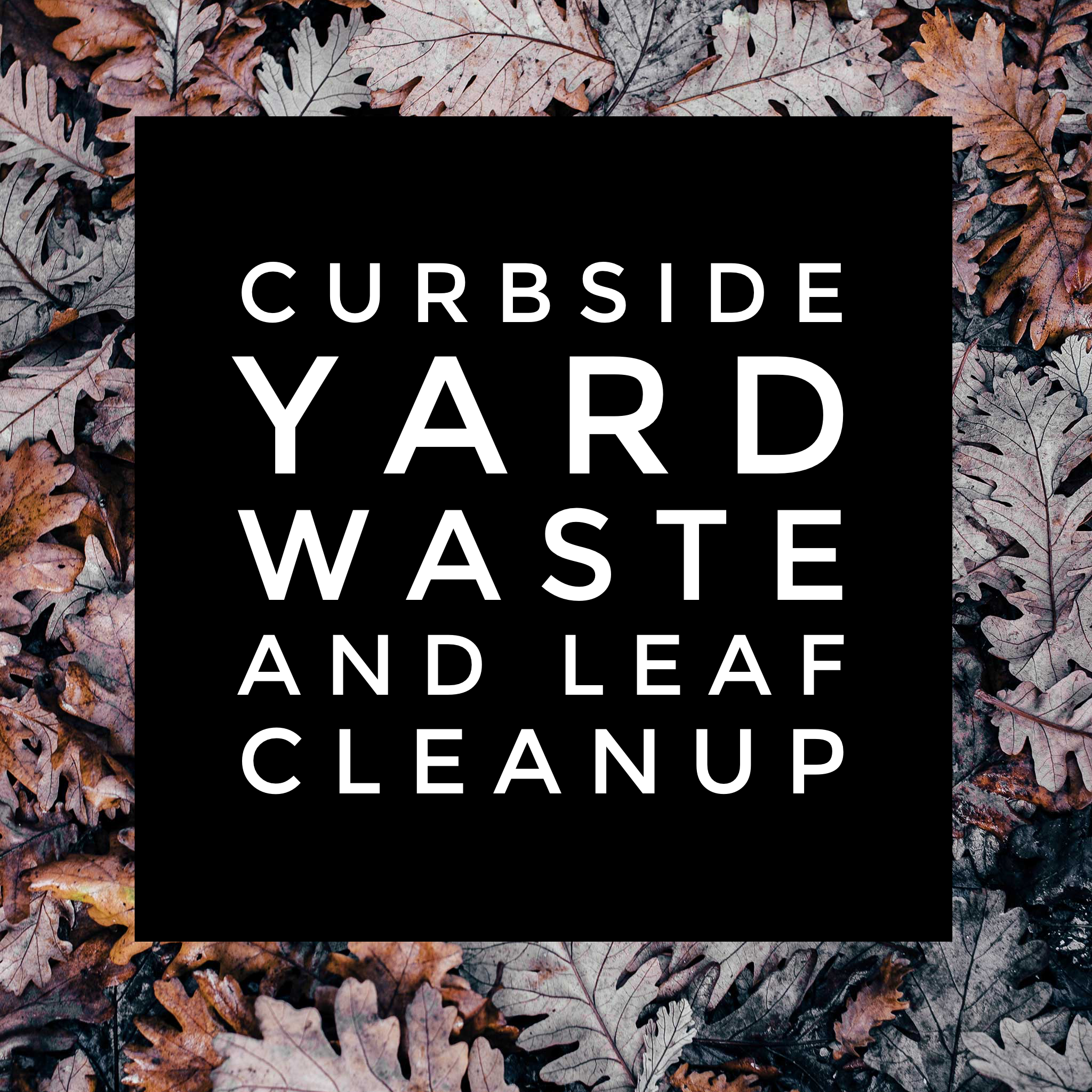 Curbside Yard Waste and Leaf Cleanup